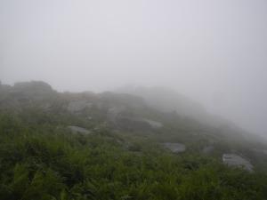 Visibility at Sharptor.